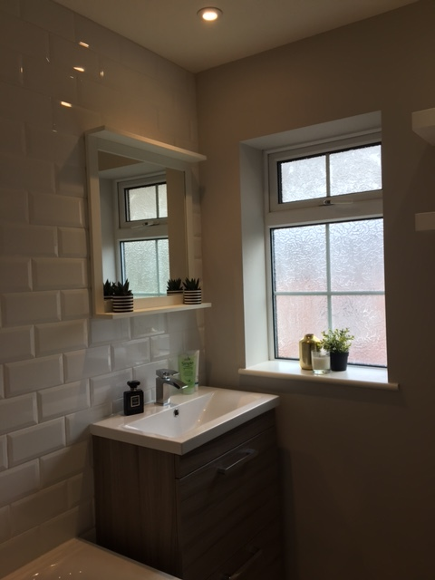 Bathroom cabinet and mirror view.JPG