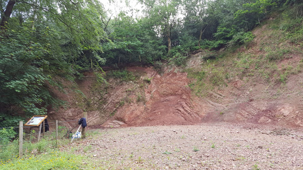 Barnt Green Road Quarry - a story of folds and faults
