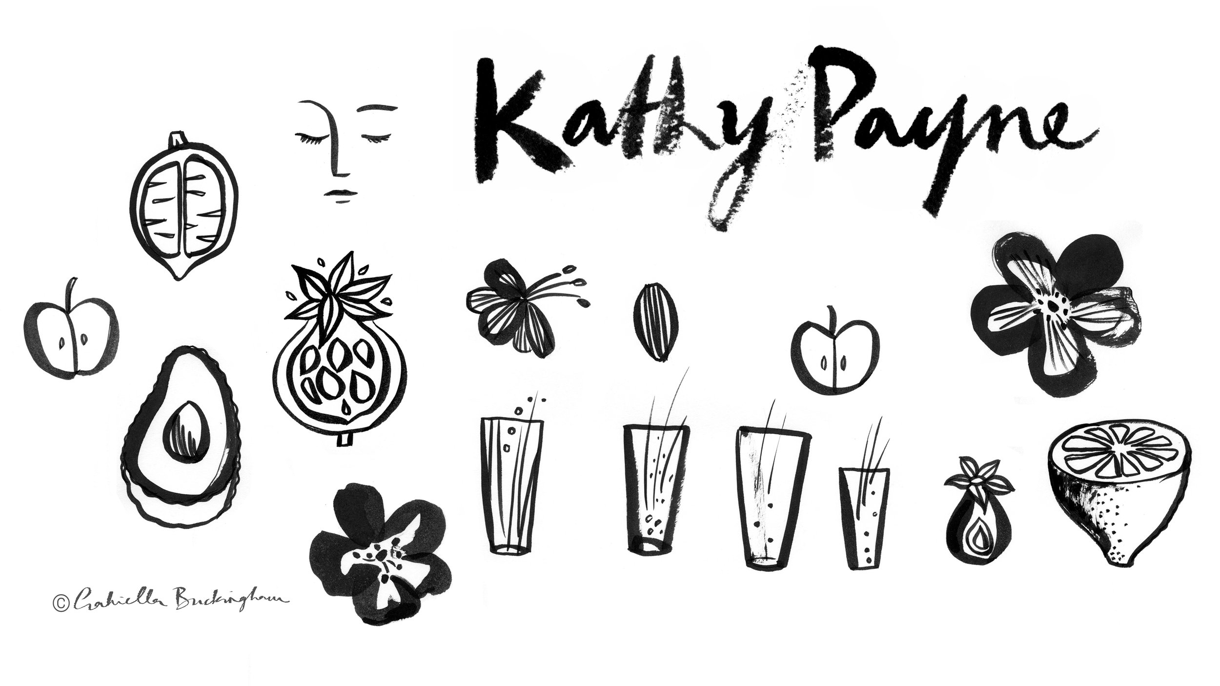 kathy-payne-logo-and-illustrations.jpg