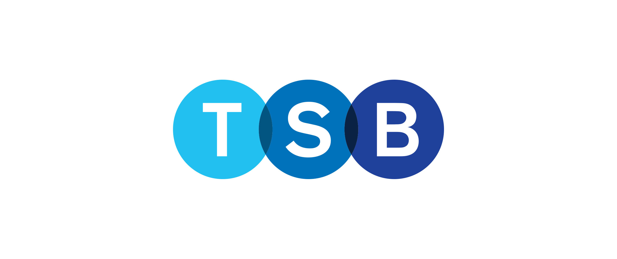 TSB_Core_Brand_Mark_v2 copy.jpg