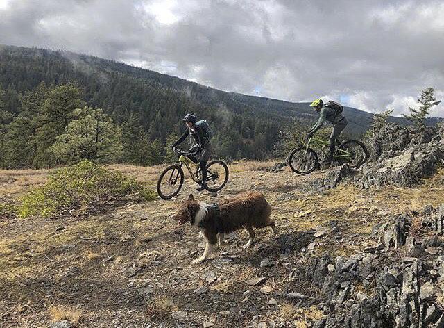 jude mt biking with dog and husband.jpg