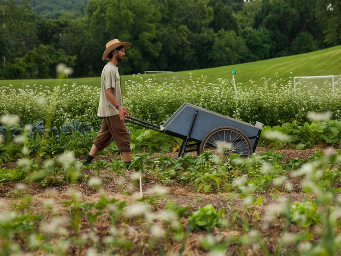 This is Ben's favorite style of garden cart, pictured in action in Virginia. A wedding gift of liquid assets will pay for such a cart.