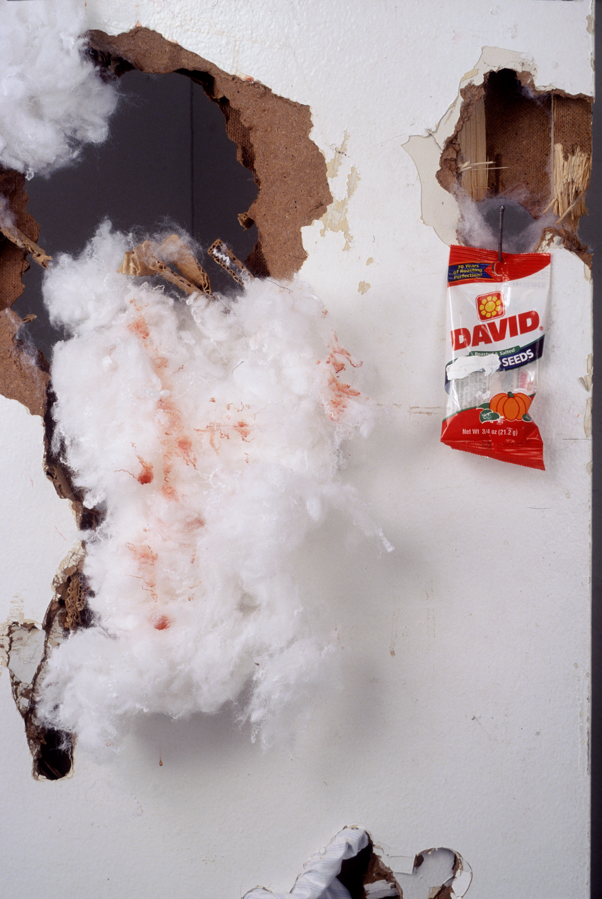 """""""David's Seeds"""" detail  Chicken blood on cotton,  chicken blood on found doors,  cotton on found doors,  gesso on David Sunflower Seeds bag;  wood studs and hardware  Dimensions variable  2001"""