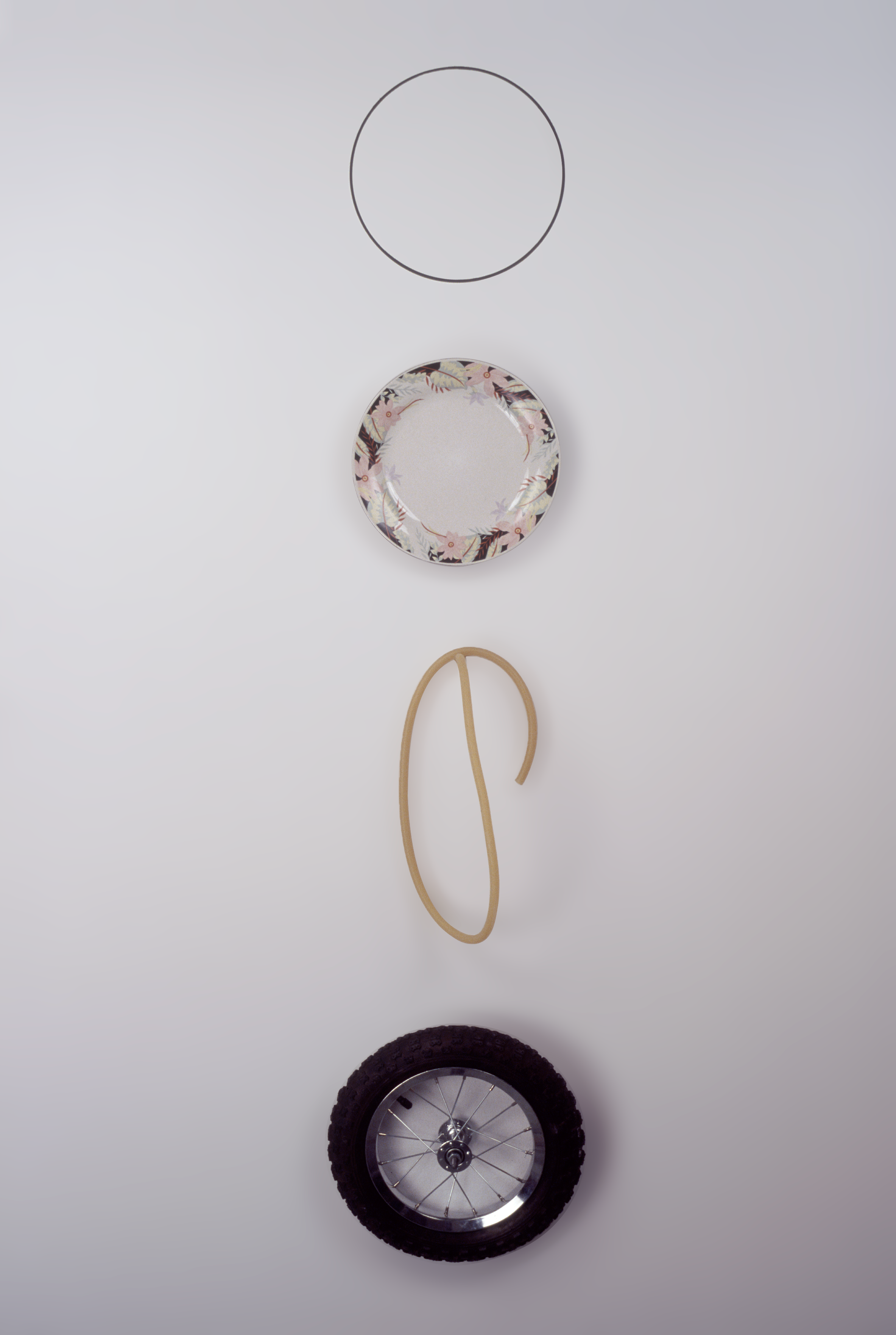 """""""Man""""  Marker on wall,  Plate on wall,  Latex tube on wall,  Bicycle wheel on wall,  Dimensions variable  2001"""