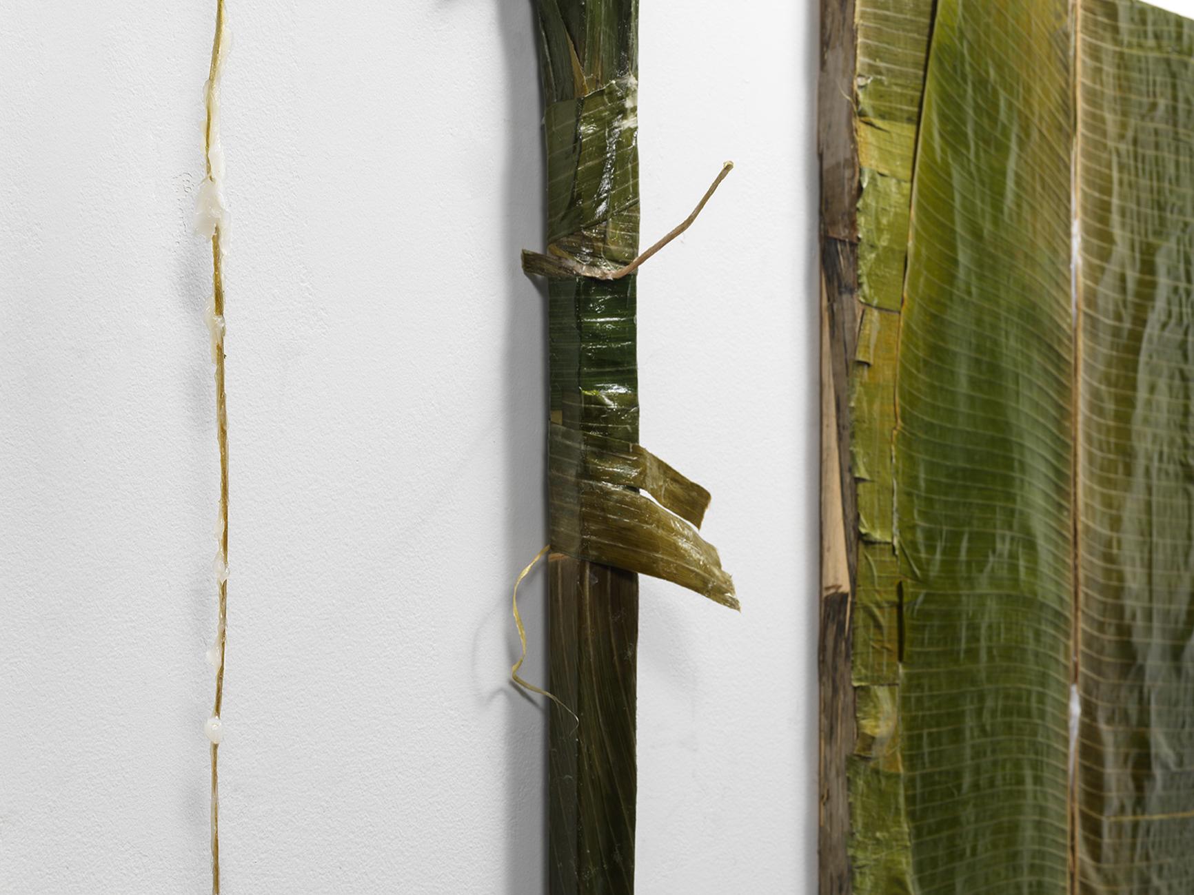 """Colgão Diptych"" (detail)  petrolatum (Vicks VapoRub) on plantain leaves lined with resin,  36 x 24 in.each  2017"