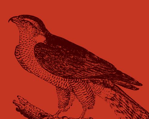 Birds of Shakespeare