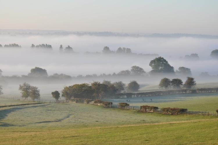 Morning-mist_Melvin-Mallard.JPG