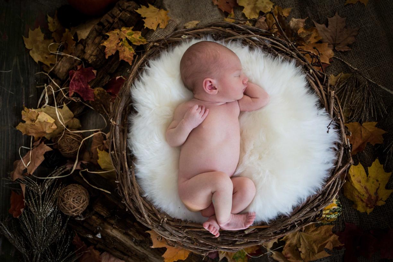 Baby-Ayden_Dukat-Photos-1022.jpg