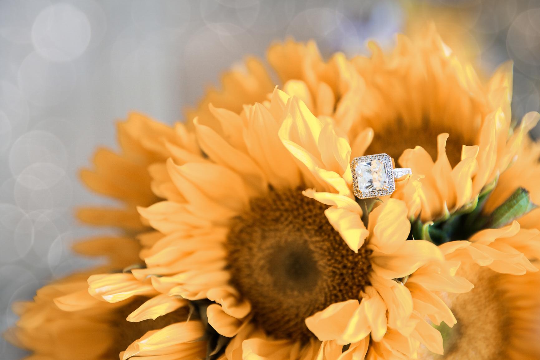 Dukat Studios Weddings-1106.jpg
