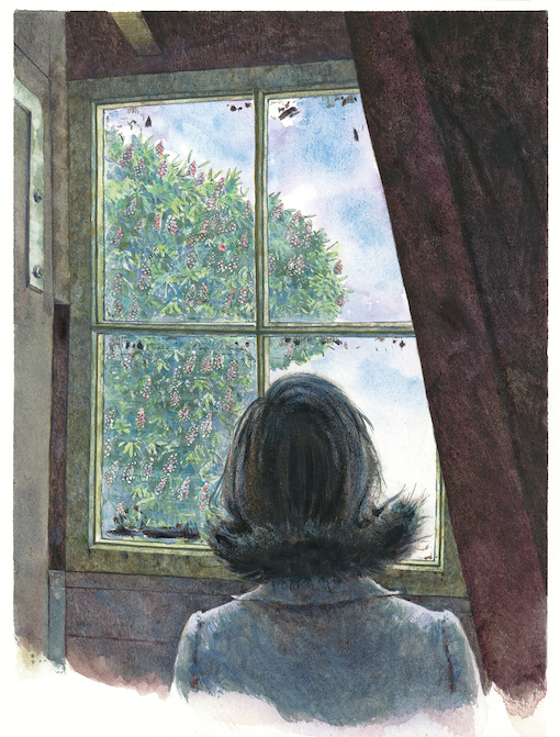 Anne would look out of the attic window of the Secret Annex to the large chestnut tree, the sky and the birds. (Illustration by Huck Scarry, from p. 24 of  All About Anne  © Anne Frank House)