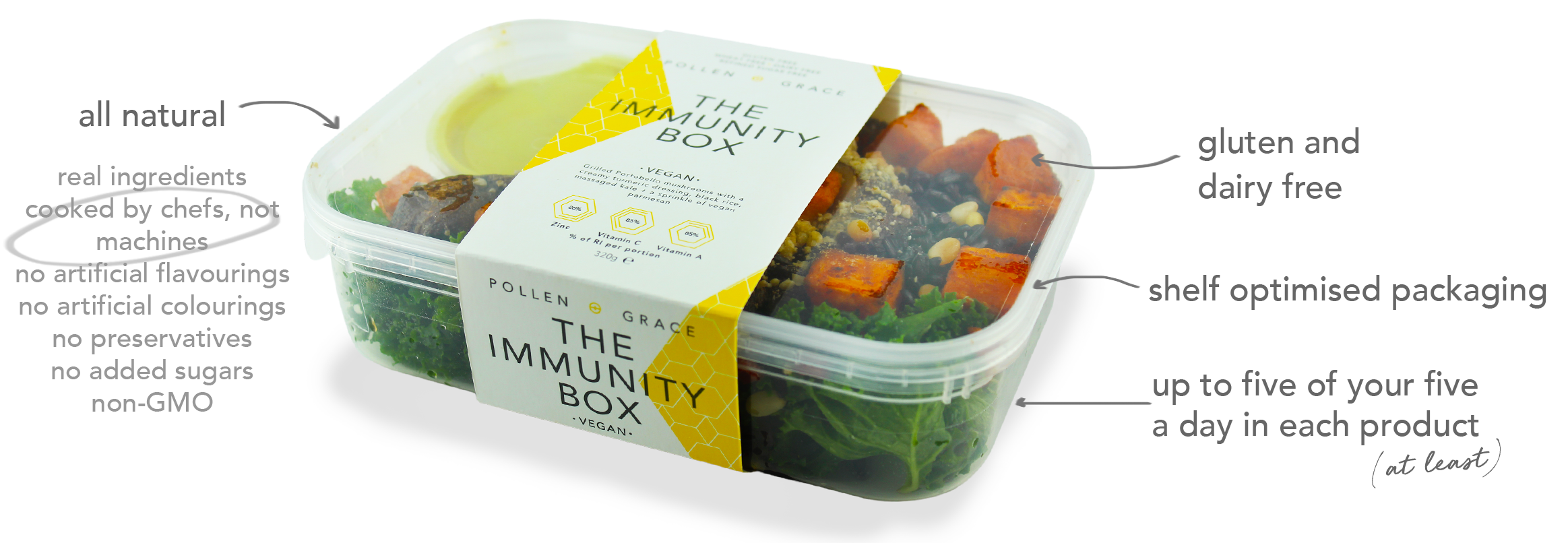 gluten free dairy free vegan lunch box.png