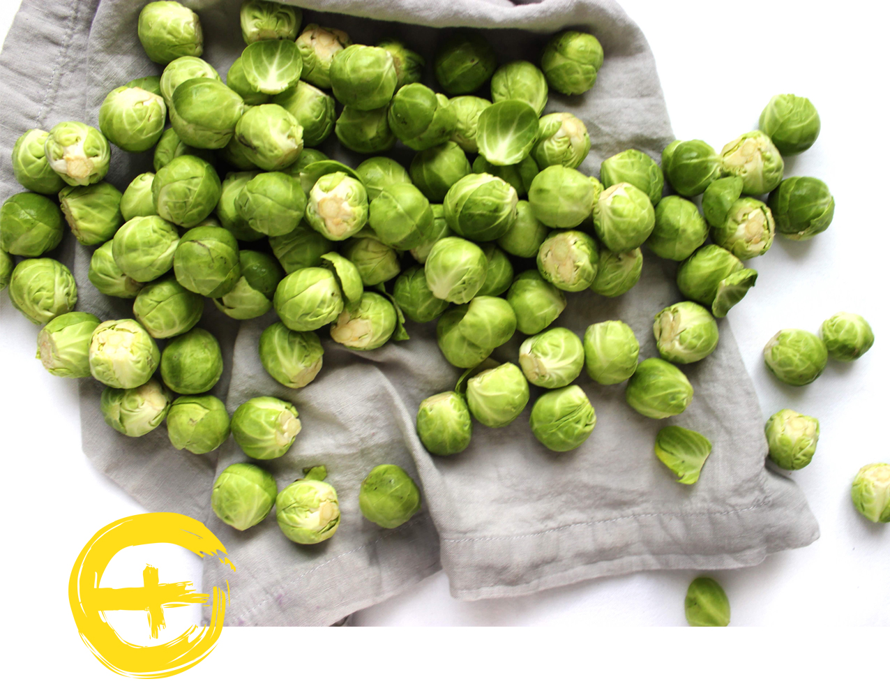 image sprouts.jpg