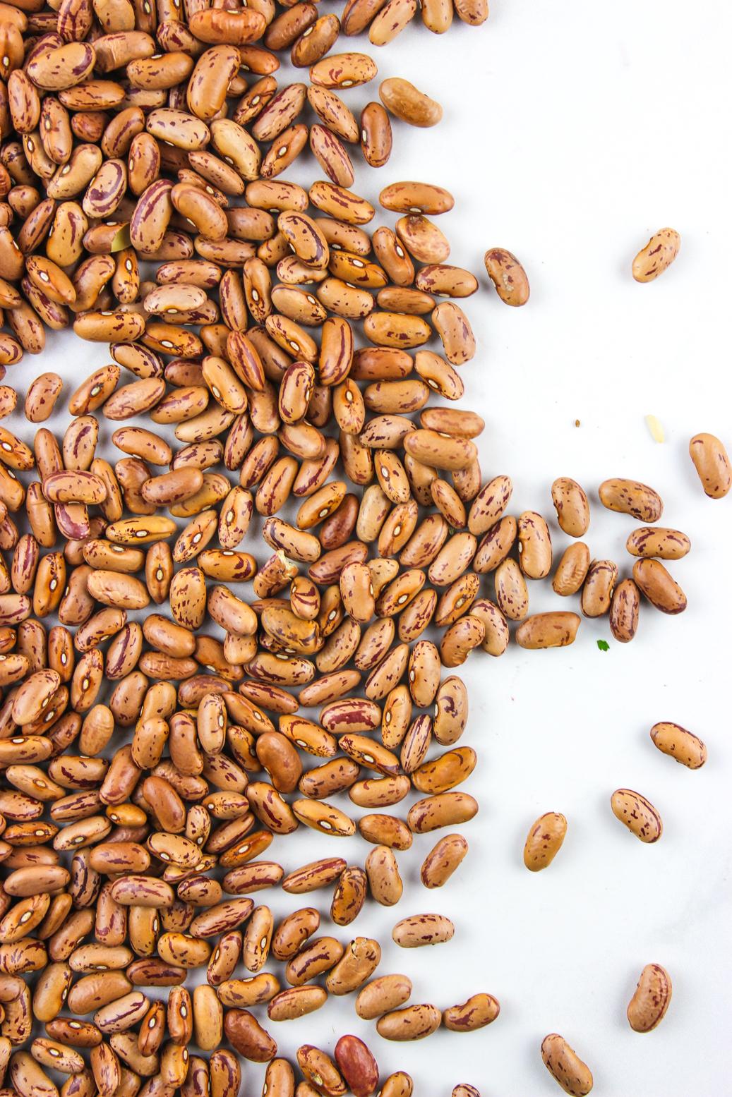 aduki beans-9.jpg