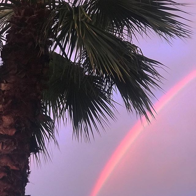 Nice to see you April! 🌴🌈 #aprilshowers