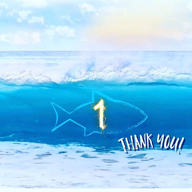 We sincerely want to say thank you to all of our customers, vendors, contractors, past employees, new employees, and anyone else or company that helped contribute to the success of Pokē Fish. We are beyond grateful for making it one year and look forward to many more. 💙👉🏻🐟 #sharethelove #keeptampalocal  #keepstpetelocal