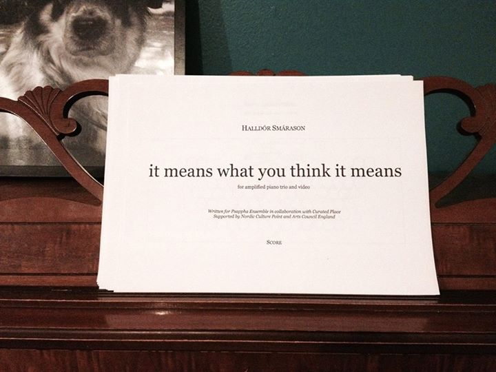 it means what you think it means - halldor smarasson