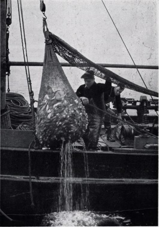 Norske fiskere i Buckie 2.PNG