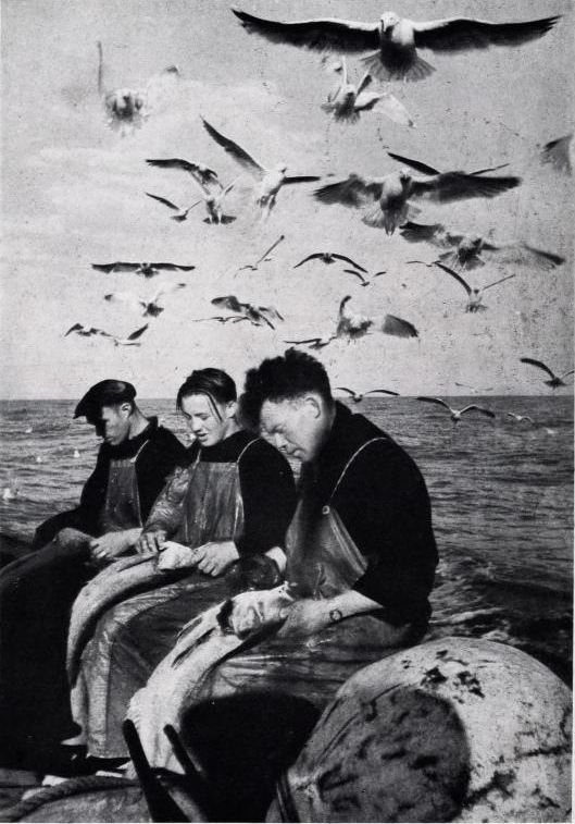 Norske fiskere i Buckie.PNG