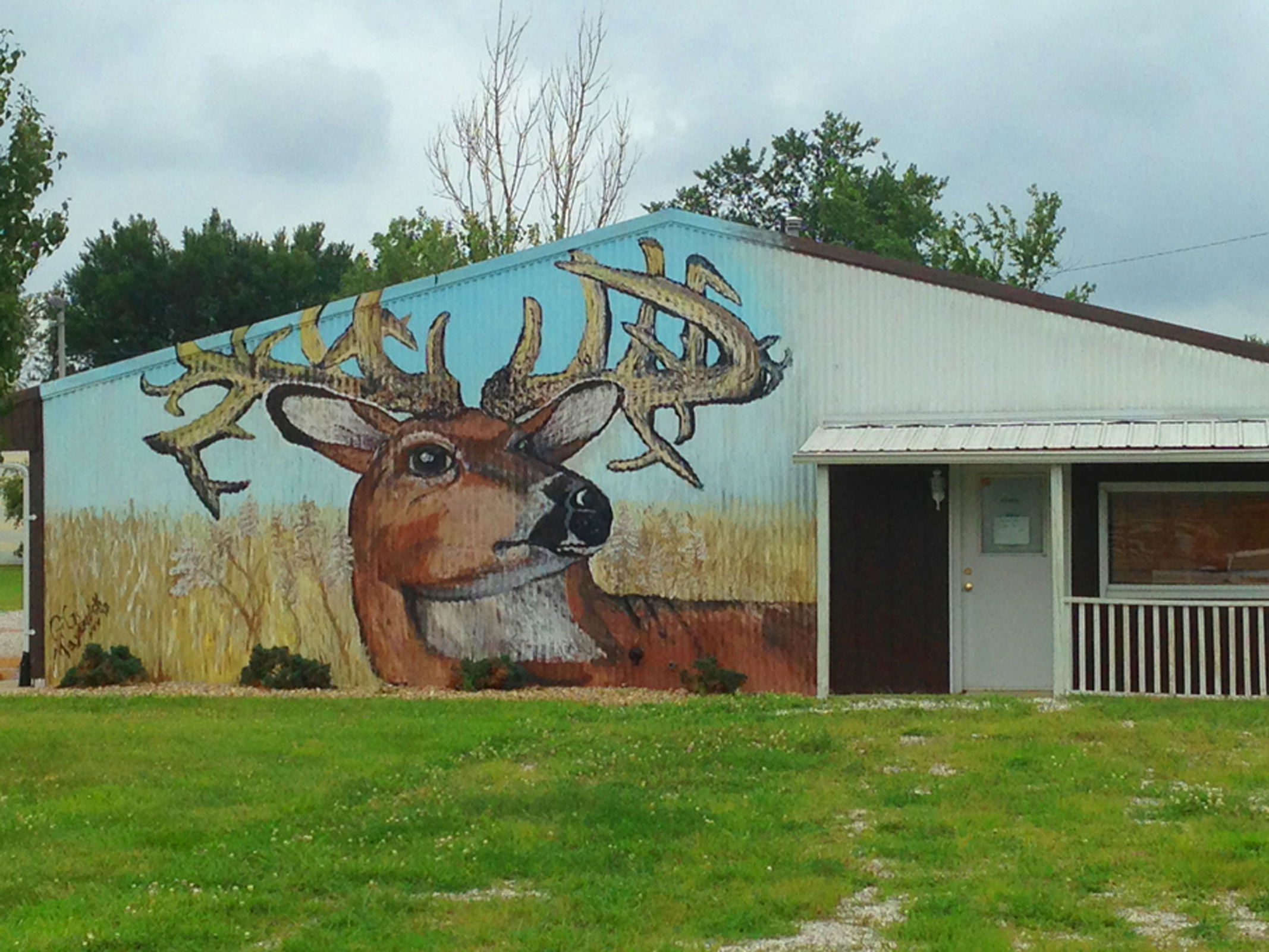 Building mural of deer