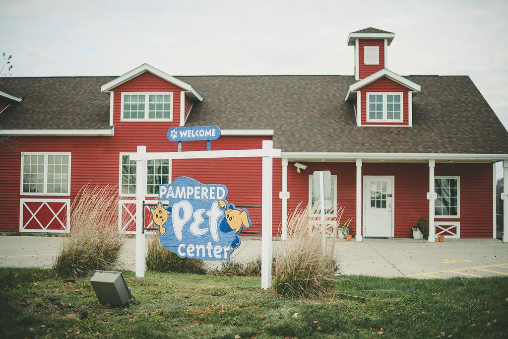 pampered pet center kate spencer photography.jpg