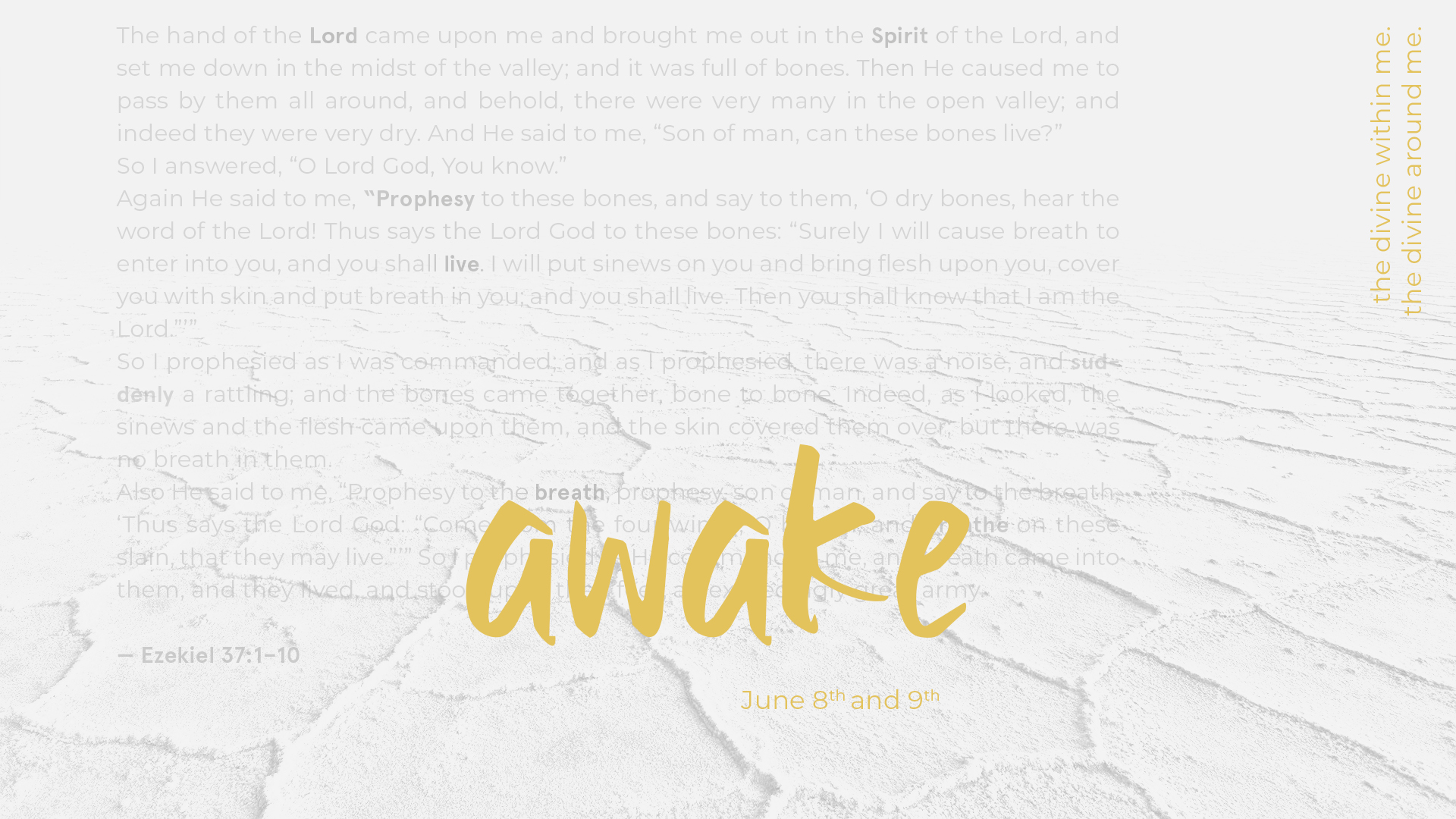 Awake conference, June 8th and 9th