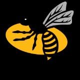 wasps trans.png