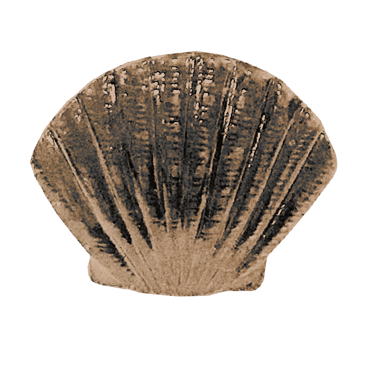 MS-9111-SCALLOP 1X1 BRASS.png