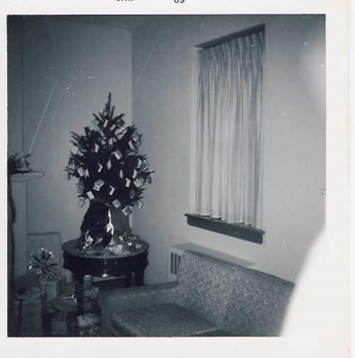 The Leaches' wedding tree. Guests signed cards on this tree instead of a guestbook on Dec. 21, 1968.