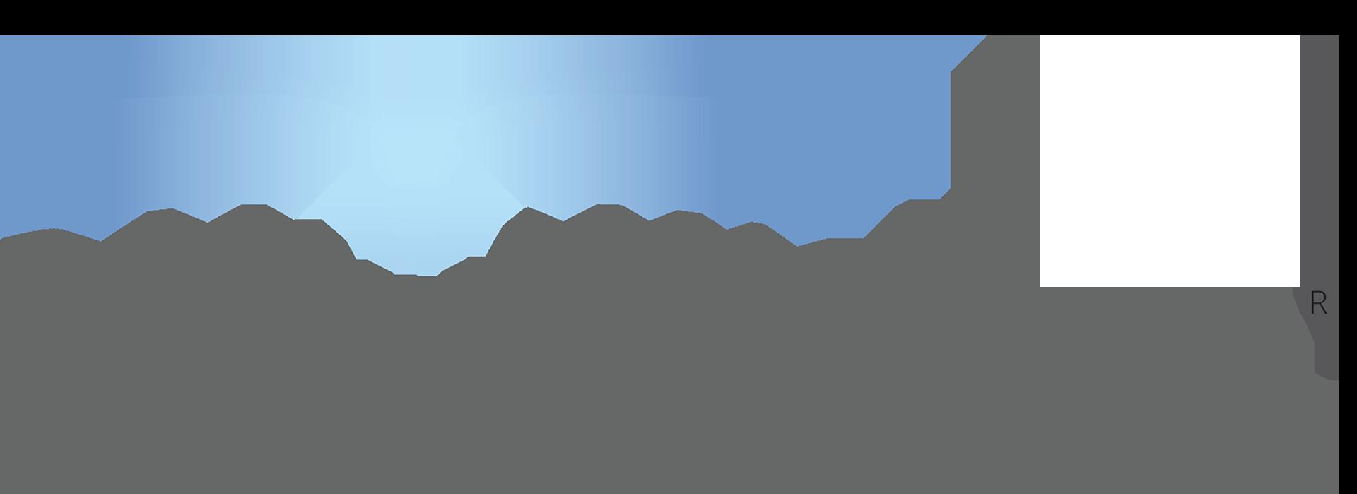 Banyan Water Logo 2016.png