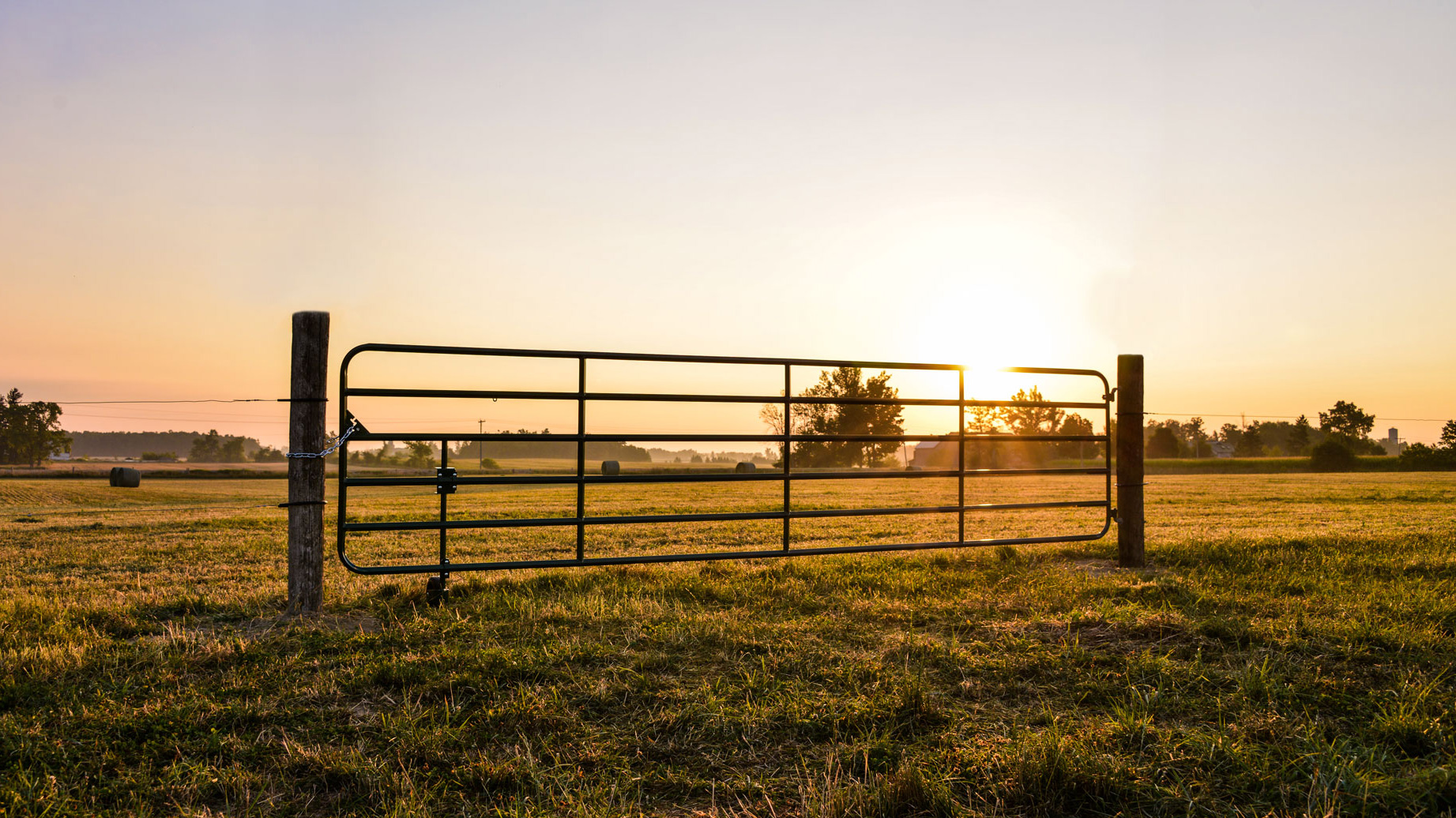 cattle-gate-lifestyle-3.jpg