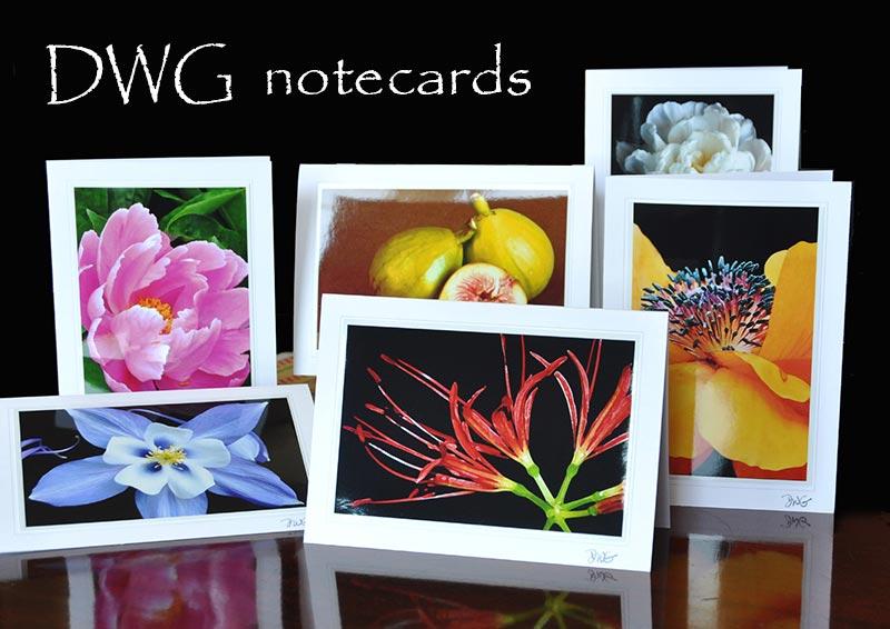 notecards-800.jpg