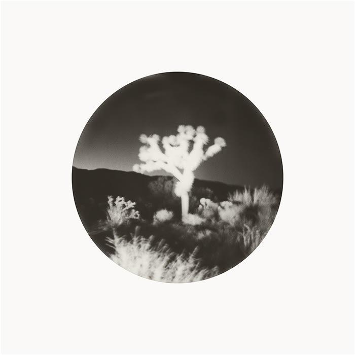 Spirit World 2 by Joann Edmonds