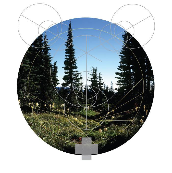Rainier Botany 3 by David Bellard