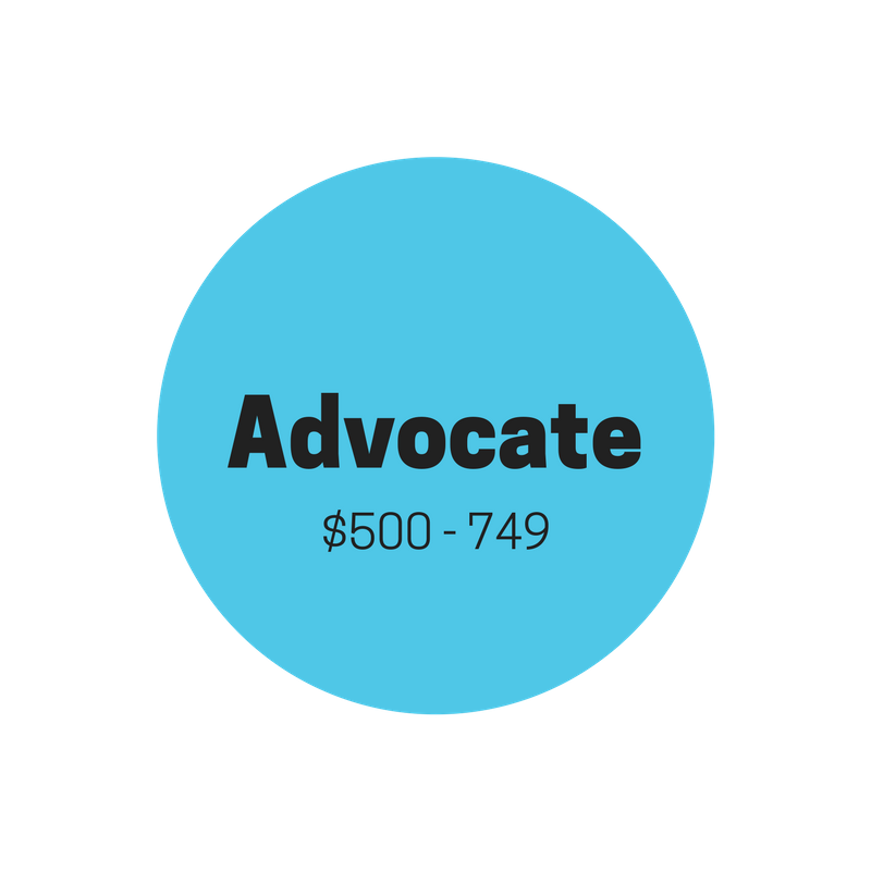 "ACCESSIVE ""ADVOCATE""    $500-$749    Provides two years of sponsorship for student   Personal thank-you note from sponsored student  Quarterly organizational email updates  Official Accessive ""ADVOCATE"" donor t-shirt  Donor's name published and featured on the Accessive webpage  (optional)"