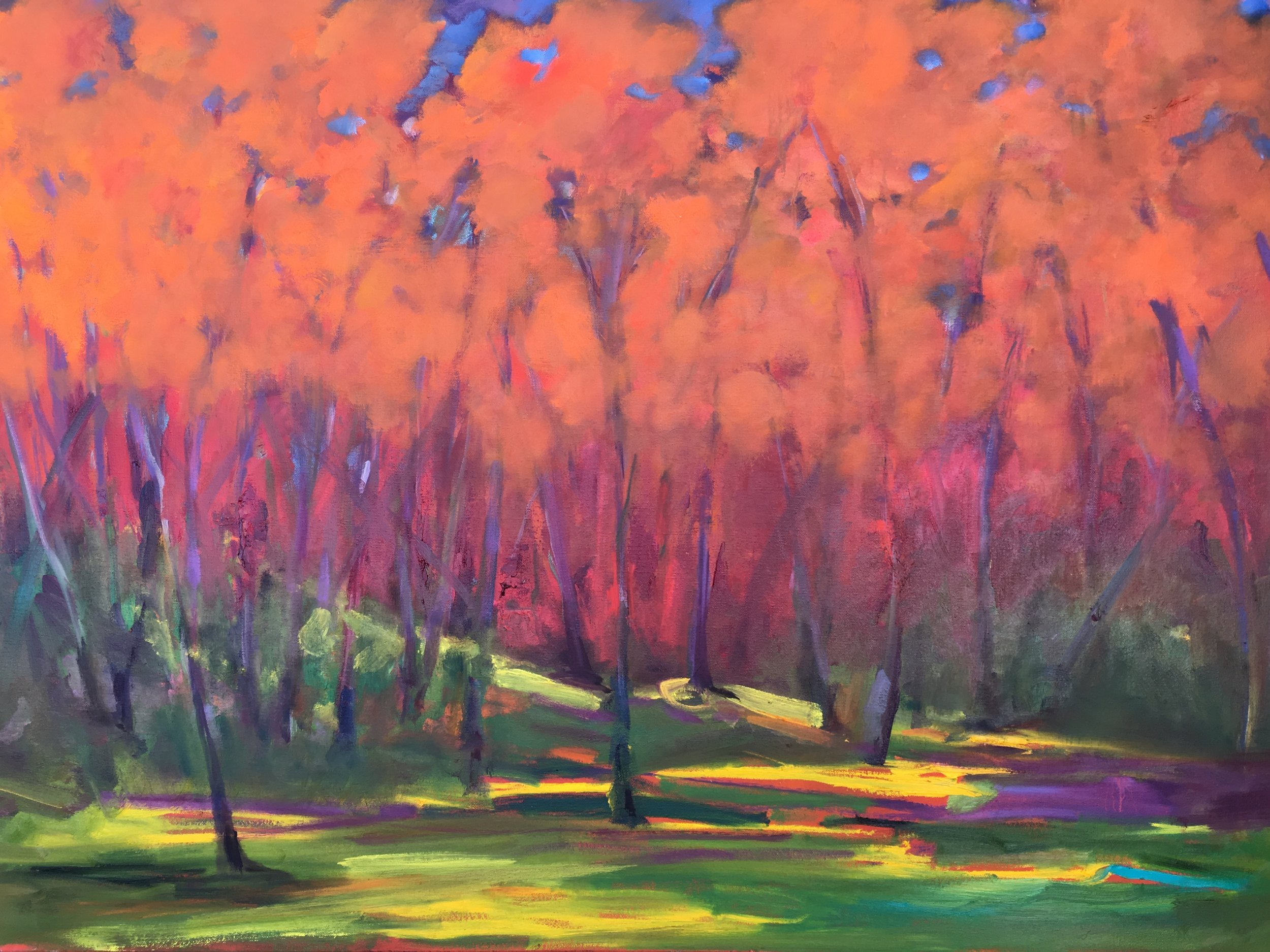 "24x30 oil on canvas, ""Country Autumn"""