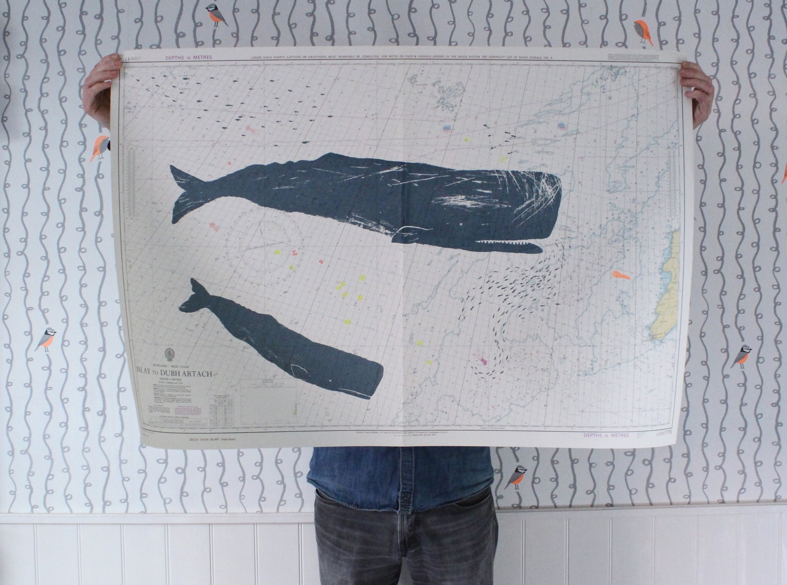 This is one of Gerry's previous spermwhale screen prints. The next edition will be a humpback whale.