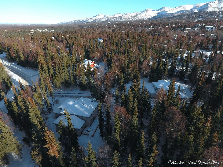 5910 West Tree - drone photos (11).jpg