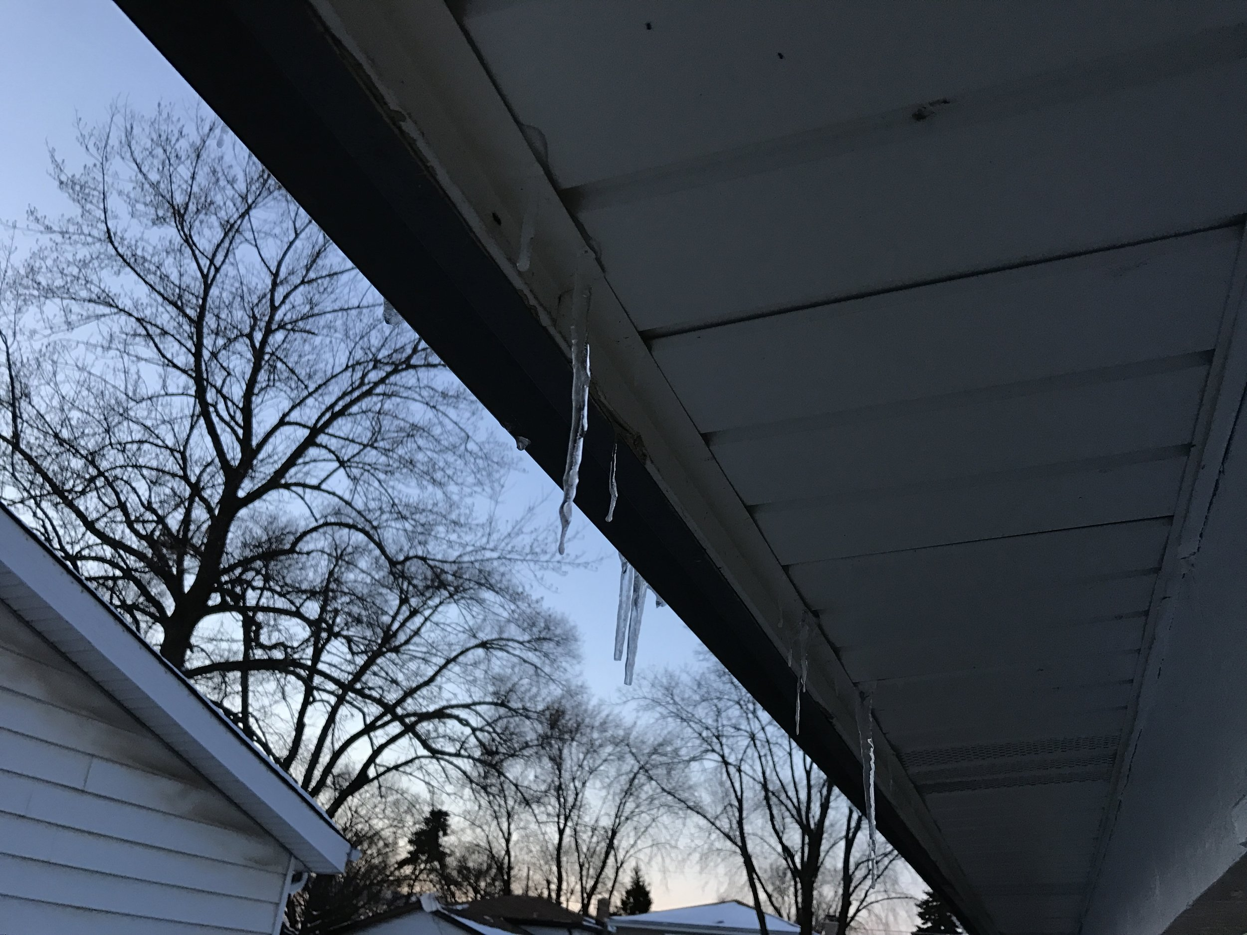 As can be seen in this example, ice damming has cause liquid water to make it's way through the fascia / soffit where it then froze.