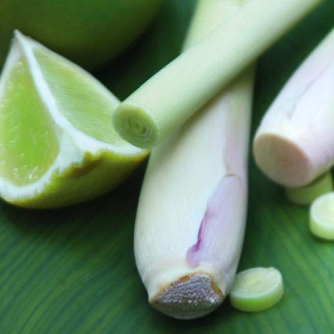 Thai-Lemongrass-Scent-Diffusion-650px.jpg