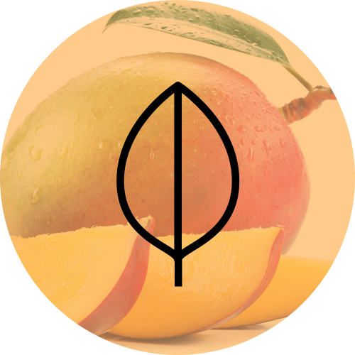 Sweet-Mango-Scent-Diffusion-500px.png