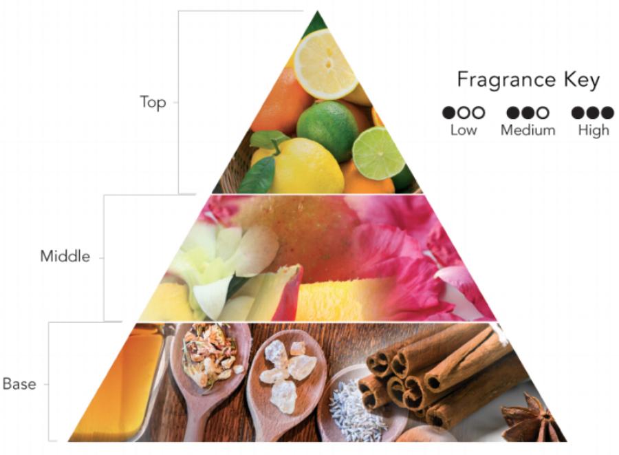 fragrance-notes-1.png