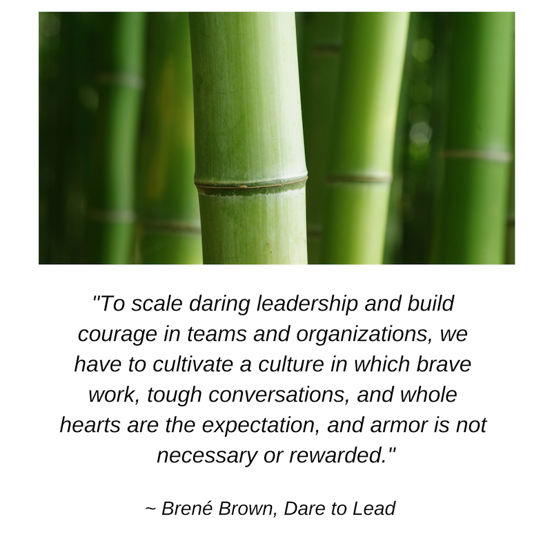 To scale daring leadership and build courage in teams and organizations, we have to cultivate a culture in which brave work, tough conversations, and whole hearts are the expectation, and armor is not necessary or re(6).png