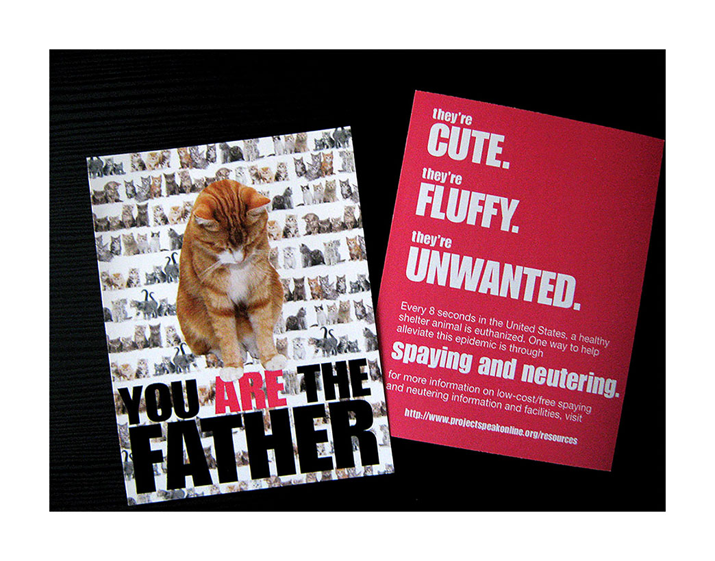 You Are The Father Postcard