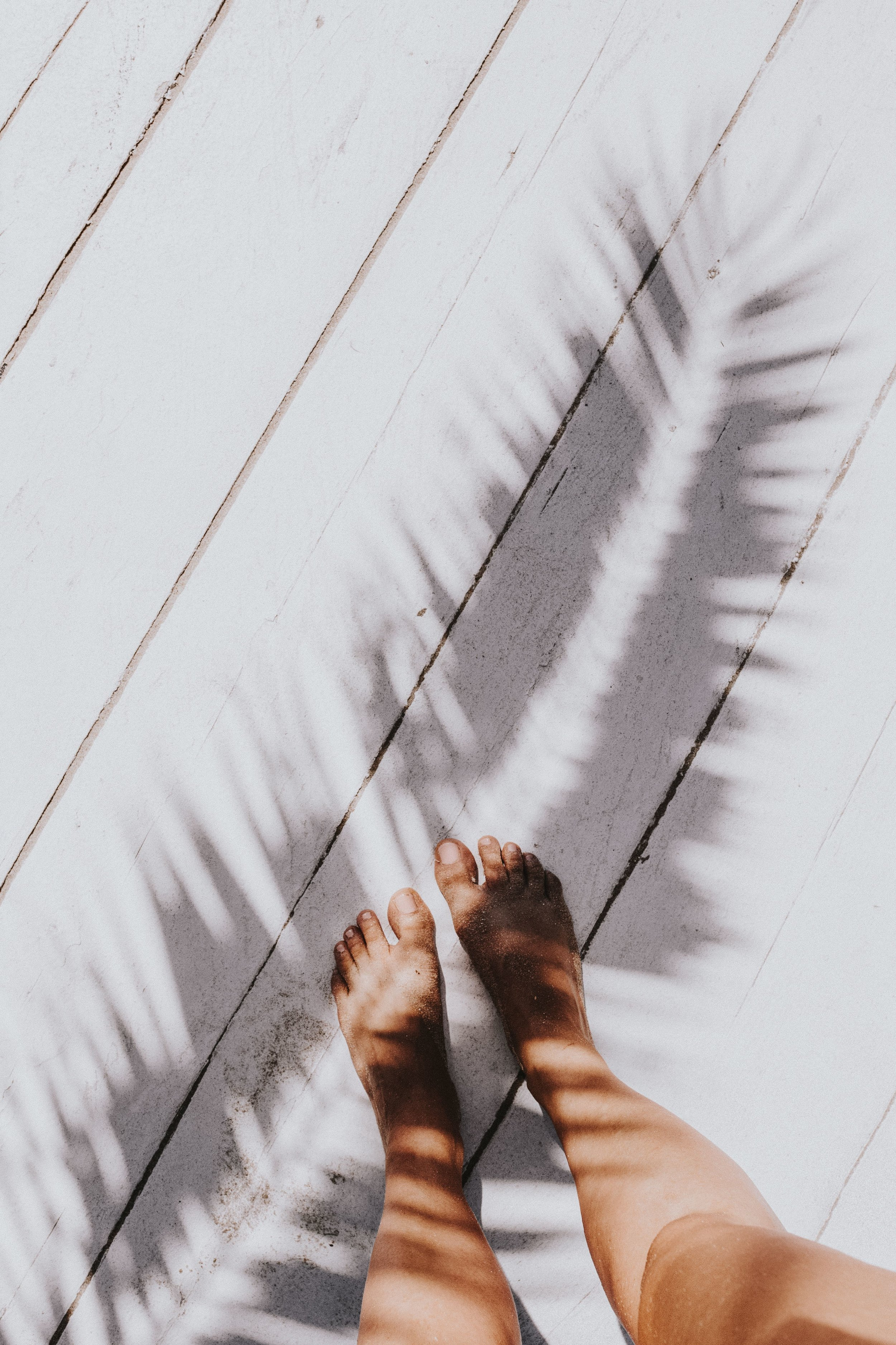 kaboompics_Woman's legs with palm shadow.jpg