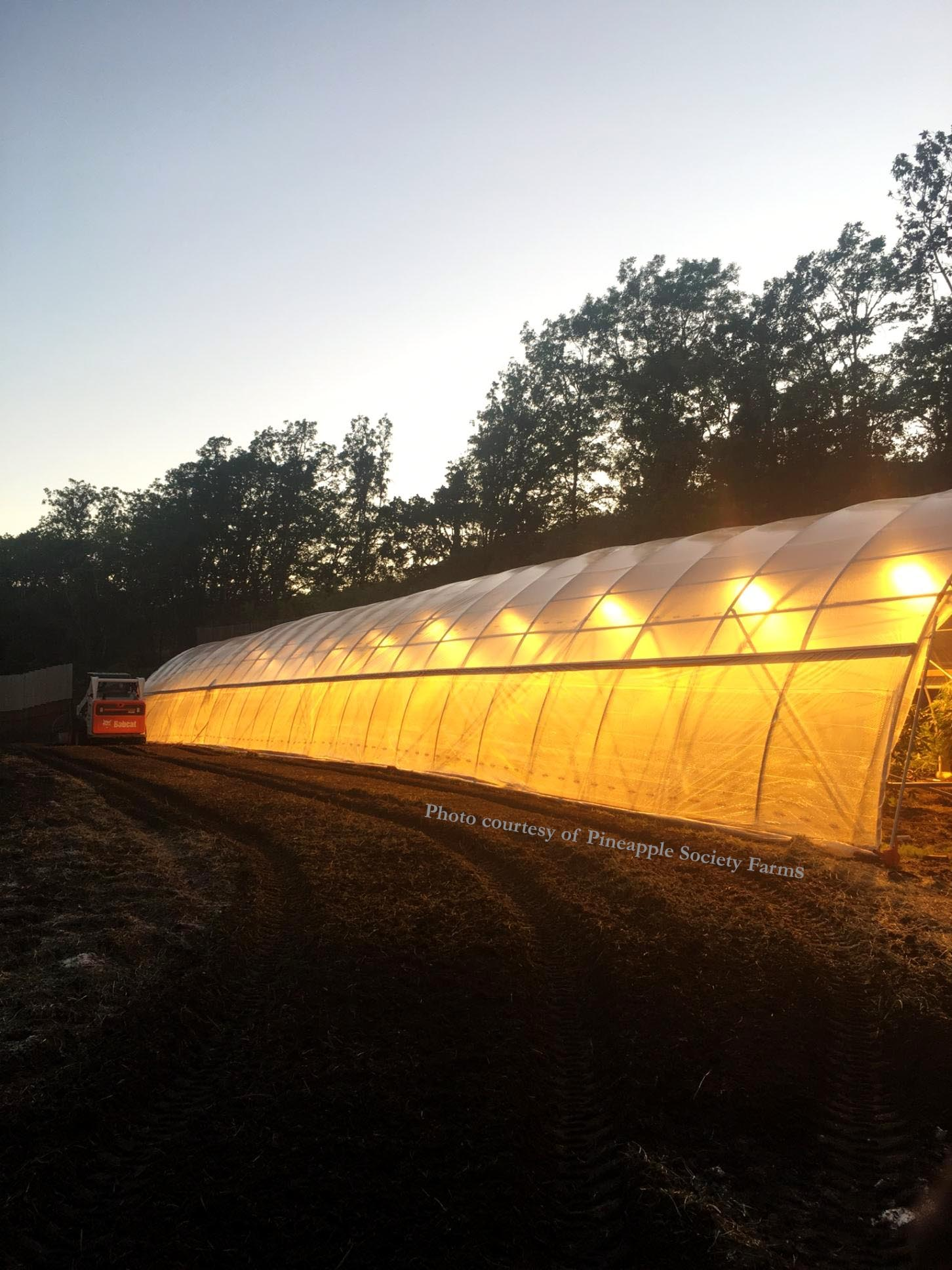 Copy of auto light dep greenhouse
