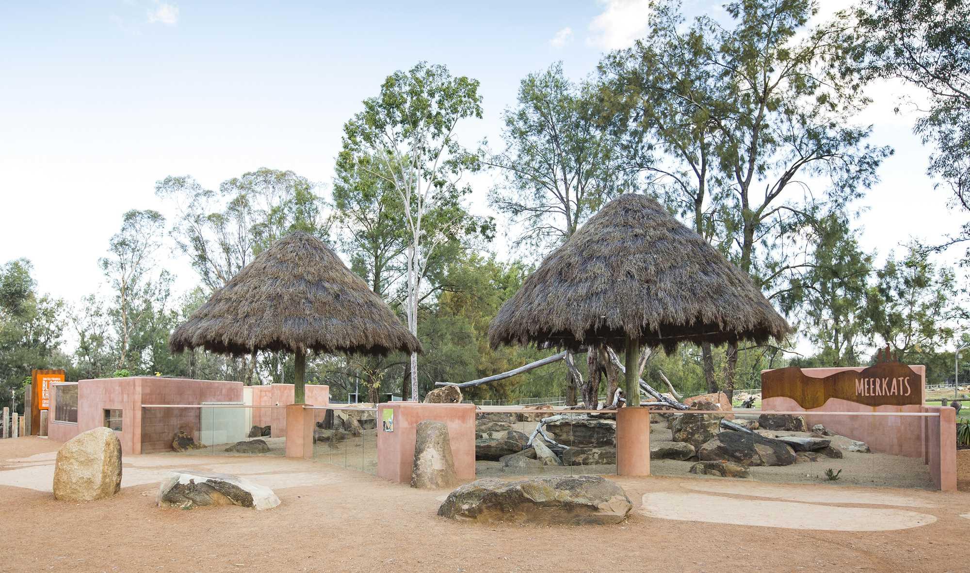 Meerkat Enclosure 2