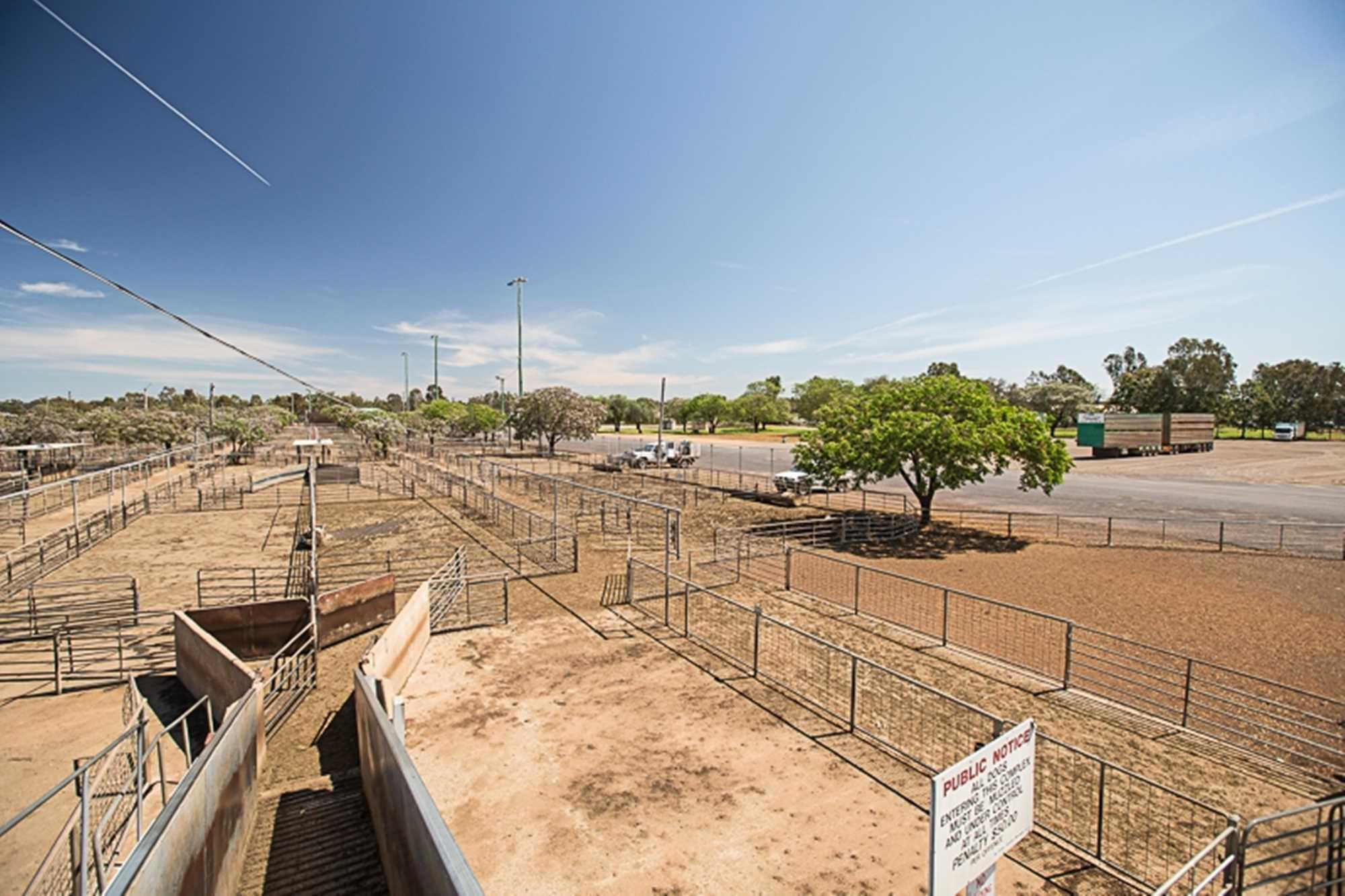 Yard Sales
