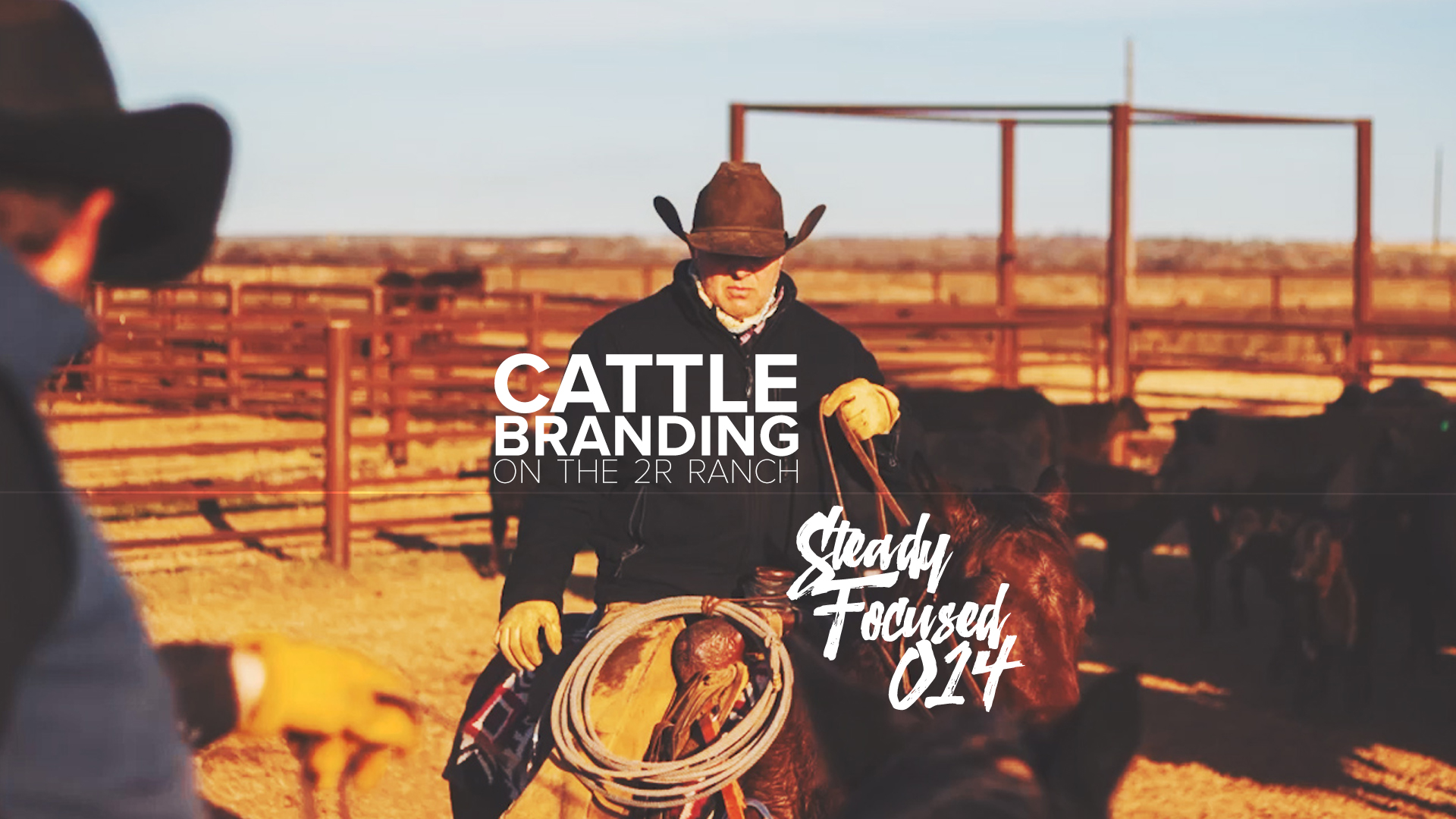 cattle-branding-photography-ranch-steady-focused