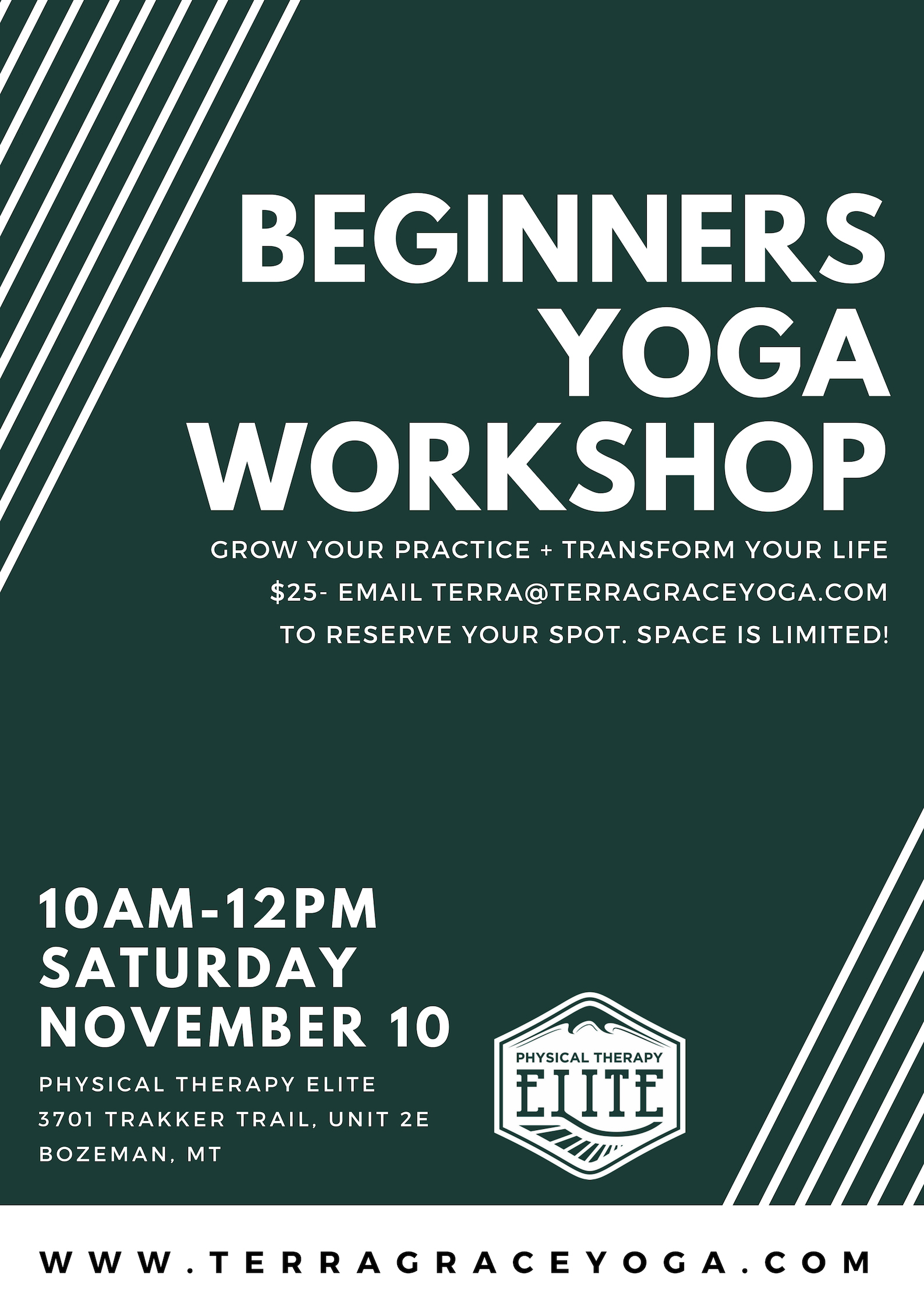 beginners yoga workshop.jpg