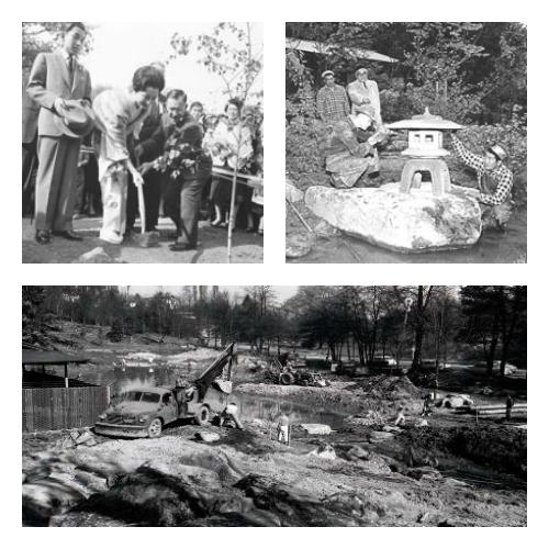 Scenes from Seattle Japanese Garden in 1960